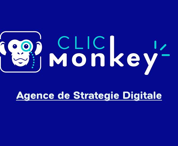 Agence de Stratégie Digitale