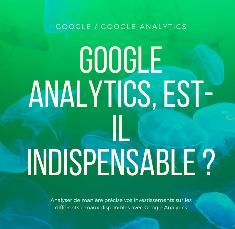 Google Analytics est-il indispensable