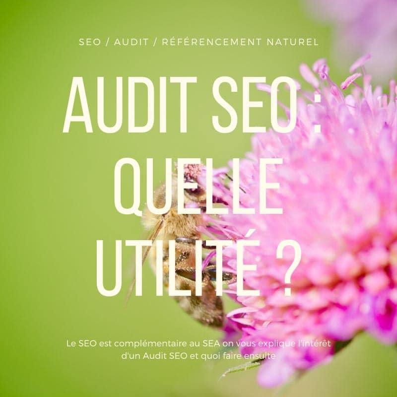Audit SEO Quelle utilité ?