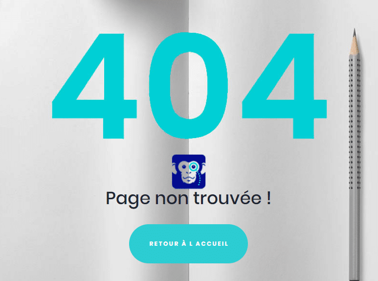 exemple-page-404