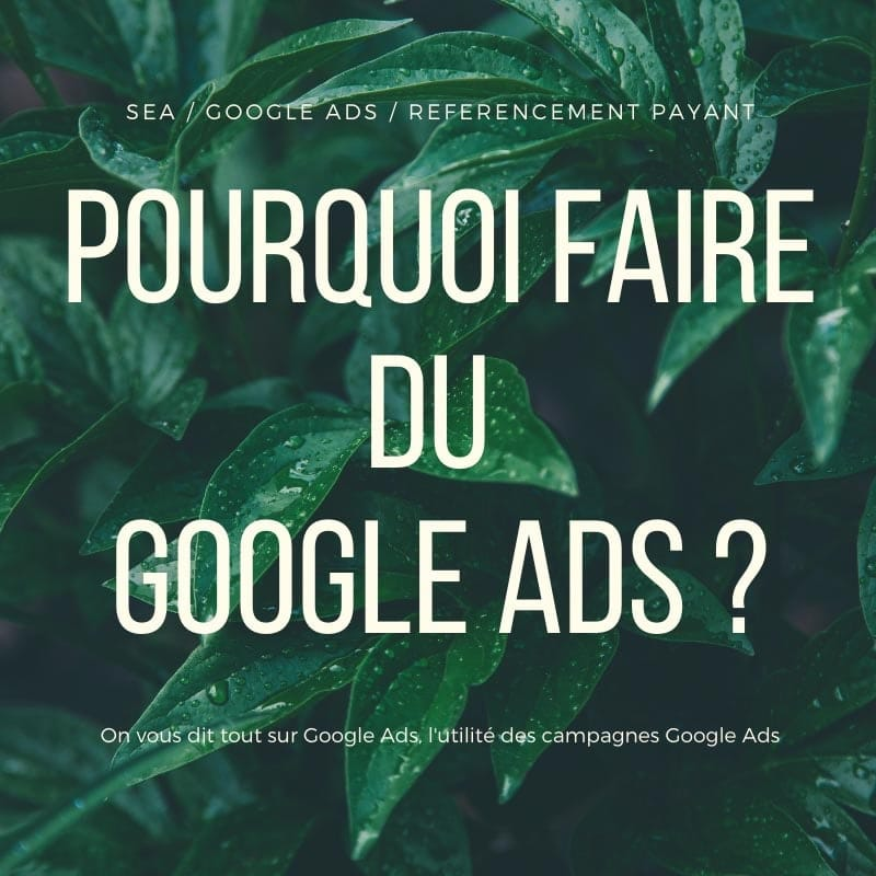 Google Ads Interets